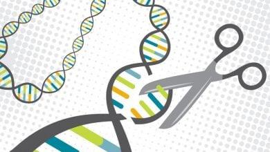 The tip of the CRISPR iceberg