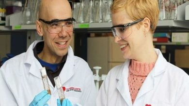 ترمیم زخم بدون تشکیل اسکار در جنین مگس میوه-زیست فن