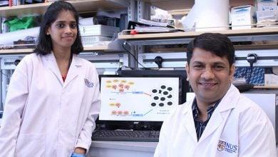 Photo of سرکوب کردن سرطان های ناشی از ویروس