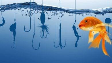 Photo of گرفتن ماهی واقعی