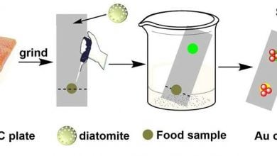 Fossilized algae hold promise for improved food safety testing - اخبار زیست فن