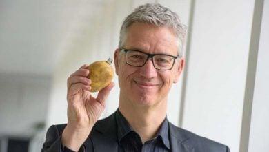 Photo of بهینه سازی تولید سیب زمینی