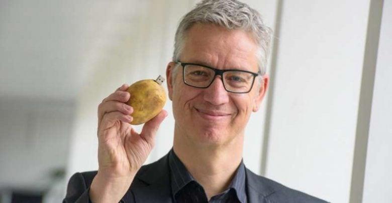 Information experts optimizing potato production - اخبار زیست فن