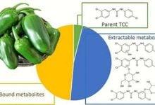 Pepper plant sops up personal care product antibiotic - اخبار زیست فن