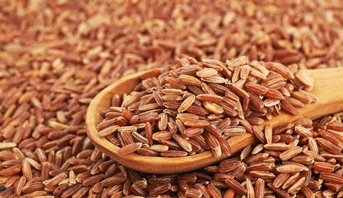 Scientist gets 10 years for theft of gene-modified rice - اخبار زیست فن