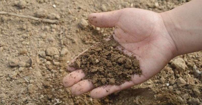 Study shows microplastics in biowaste wind up in organic compost and fertilizers - اخبار زیست فن