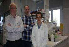 پپتید C9h سبب القای آپوپتوز در سلولهای سرطانی میشود-زیست فن