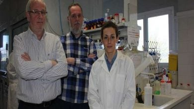 Photo of پپتید C9h سبب القای آپوپتوز در سلولهای سرطانی میشود