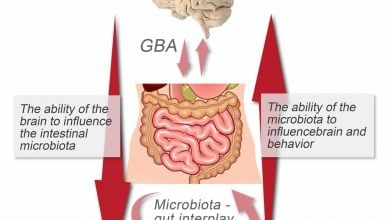 Photo of Microbiota-gut-brain axis is at epicenter of new approach to mental health