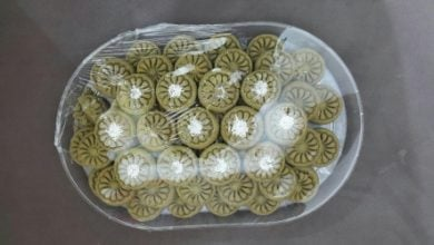 Photo of Iranian Scientists Produce Sweets for Diabetics from Seaweeds