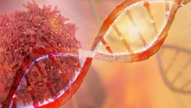 وسیلهای برای تشخیص دقیق موتاسیونهای نادر در سلولهای سرطانی! - اخبار زیست فناوری