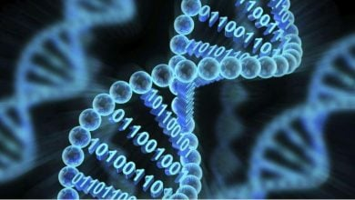 Photo of خیز مایکروسافت برای افزایش حجم ذخیره اطلاعات روی DNA