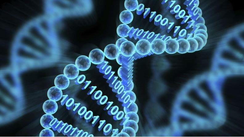 خیز مایکروسافت برای افزایش حجم ذخیره اطلاعات روی DNA - اخبار زیست فناوری