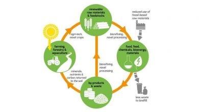 Photo of به کارگیری اقتصاد زیستی جهت تقویت کشاورزی