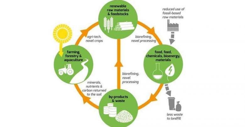 به کارگیری اقتصاد زیستی جهت تقویت کشاورزی - اخبار زیست فناوری