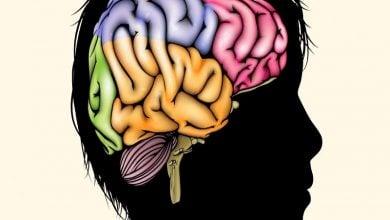 اثرات تجربیات اولیه زندگی بر DNA مغز بالغ-زیست فن