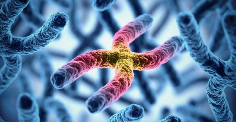 Accurate telomere length test influences treatment decisions for certain diseases