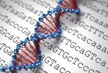 رمزگشایی ژنوم در لوسمی لنفوسیتی مزمن