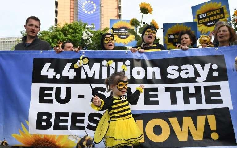 اعتراض به مرگ زنبورها مقابل بروکسل