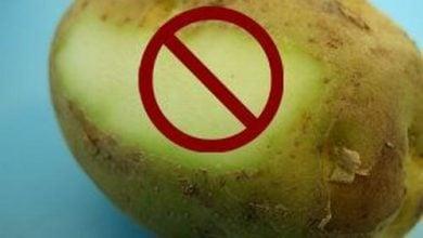 Photo of سمیت گلیکوآلکالوئید های موجود در سیب زمینی