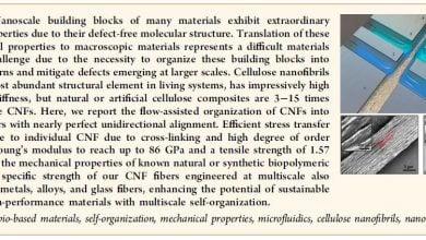 Photo of ساخت نانو فیبرهای سلولزی با مقاومت بالا