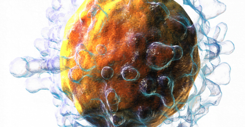 Unconventional T-Cell Subtype Is Competent Virus Fighter