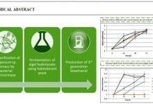تولید اتانول زیستی از زیست توده ی macroalgal با کمک آنزیم لامینارین