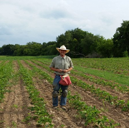 Impact of weather and well-timed cultural management techniques on organic weed control - اخبار زیست فن
