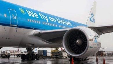 گسترش مصرف سوخت جت زیستی در خطوط هوایی هلند و سوئد