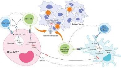 نقش Bria-IMT™در کوچککردن تومورهای سرطان پستان