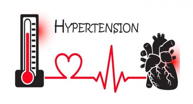 Rare plant compounds could hold key to treating resistant hypertension - اخبار زیست فن