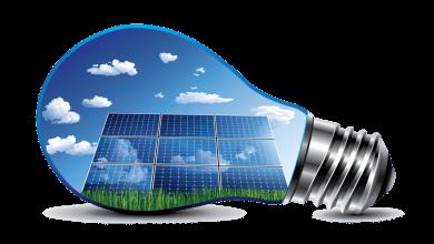 Photo of طراحی سلول خورشیدی با تمرکز بر فتوسنتز
