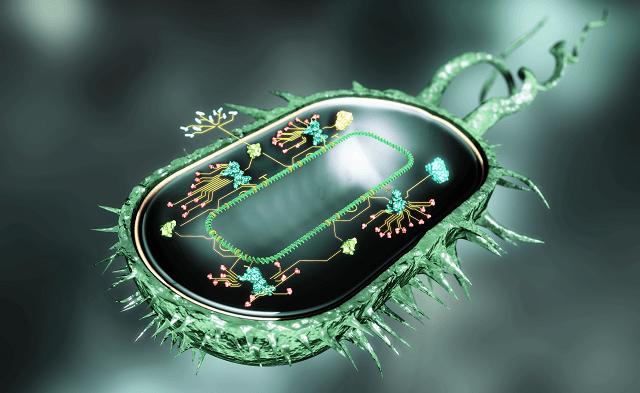 ساخت سلولهای فوقمقاوم با زیستشناسی مصنوعی