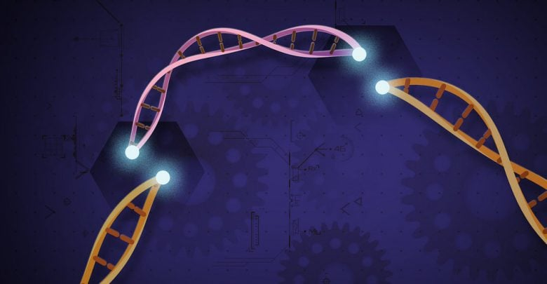 """CRISPR """"One Shot"""" Cell Therapy for Hemophilia Developed"""