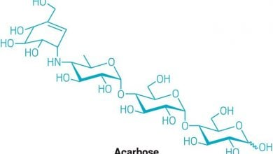 Photo of نقش مولکولهای کوچک در تنظیم میکروبیوم
