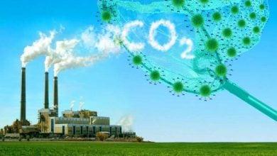 Photo of جداسازی کربن، فناوری پر درآمد در صنعت سوختهای زیستی آمریکا