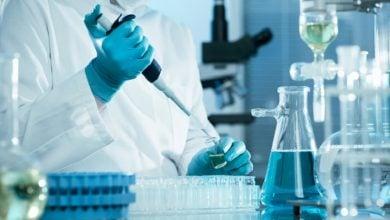 محققان سعی دارند از طریق اجرای یک رژیم غنی شده با سلنیوم روی موش ها، به ترمیم آسیب سلولی ناشی از این آفت کش بپردازند.