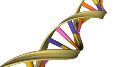 ترمیم DNA سلولی