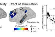 Photo of کشف تکنیک غیرتهاجمی برای اختلالات عصبی