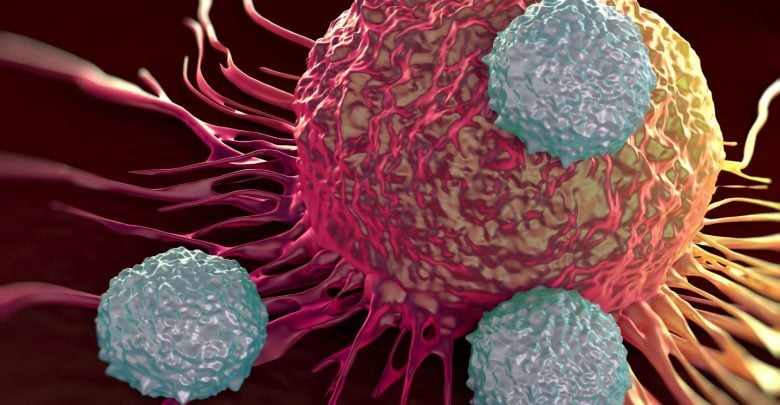 Penn study finds that different diseases elicit distinct sets of exhausted T cells