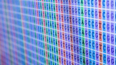 Photo of شراکت Fluidigm و Genomenon برای توسعه خدمات طراحی پانل ژنوم