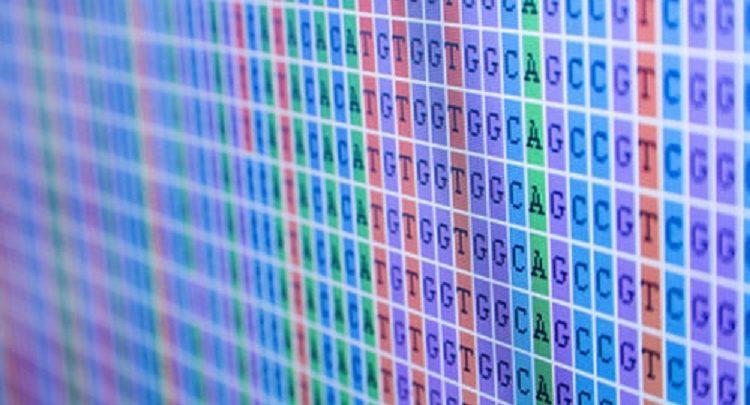 طراحی پانل ژنوم
