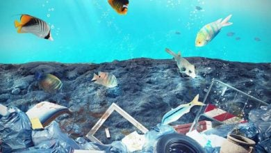 Photo of آلودگی پلاستیکی اقیانوس ها