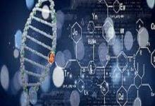 Photo of ساخت نرم افزار آنالیز تومور توسط شرکت ژنومیک
