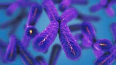 Photo of آغاز مطالعه بالینی بر روی ctDNA