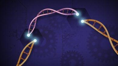 Photo of مهندسی ژنتیک با ابزار واحد