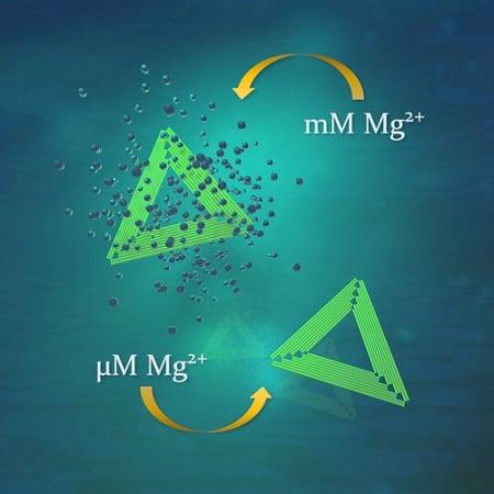 تکنیک اوریگامی DNA