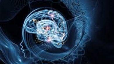 Photo of نقش جهش های کوتاه شدگی پروتئین در بیماریهای رشد عصبی
