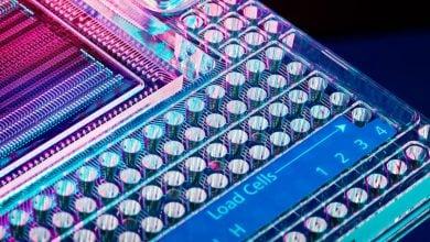 Photo of شیوه توالییابی سلولهای سرطانی توسط LexaGene