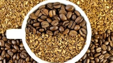 CRISPR-CAS9 USED TO KNOCK OUT GENES IN ROBUSTA COFFEE - اخبار زیست فن